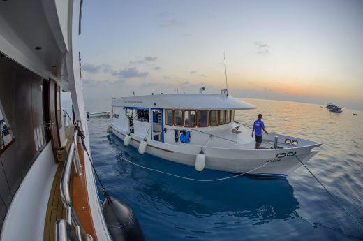 Maldives Luxury boat charter Carpe Novo Dohni