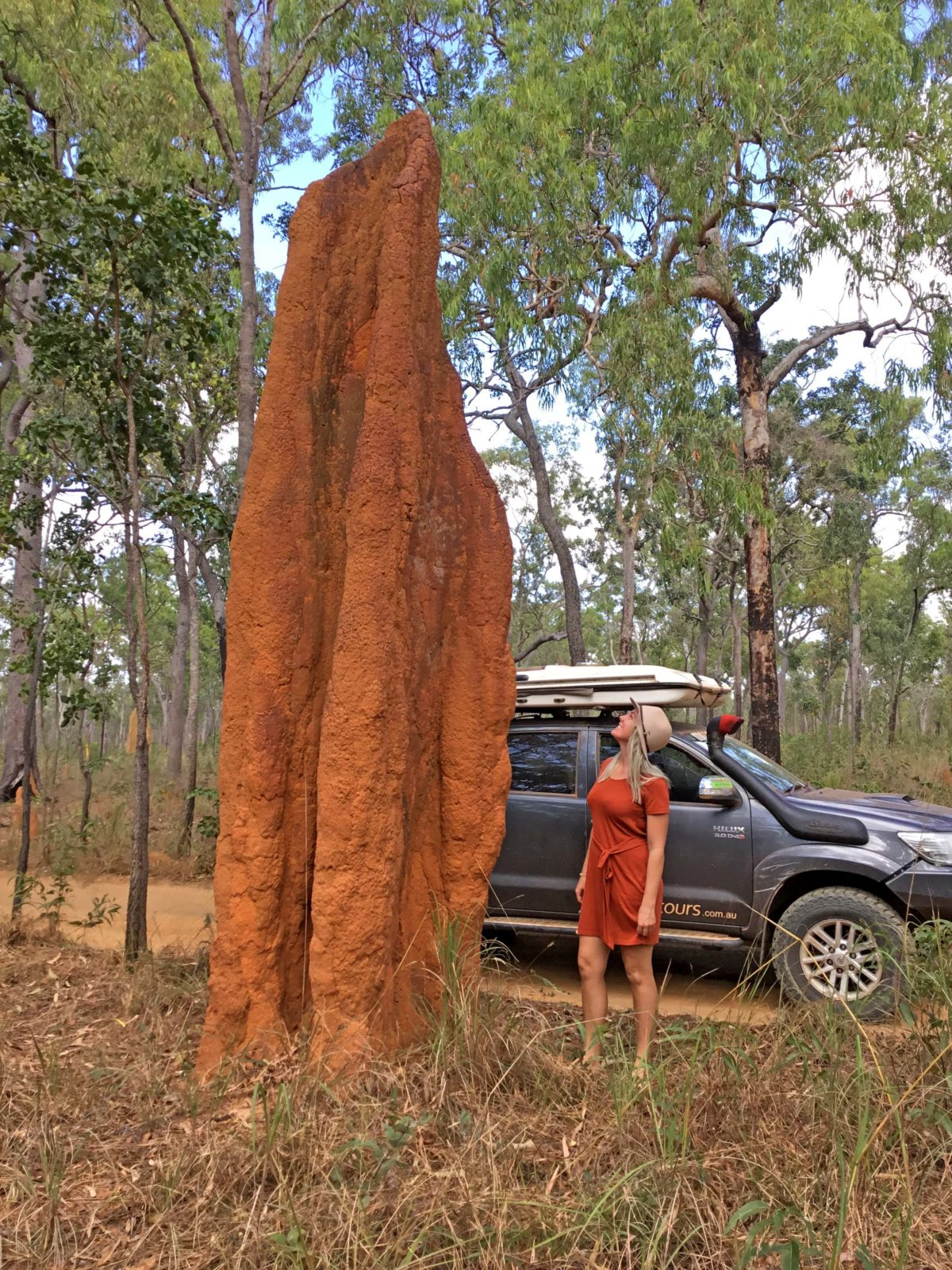 Steph Moon sizing up a termite mound