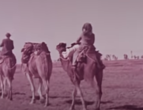 Original video of the 1939 Cecil Madigan led across the desert.