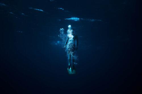 free dive-image-asset