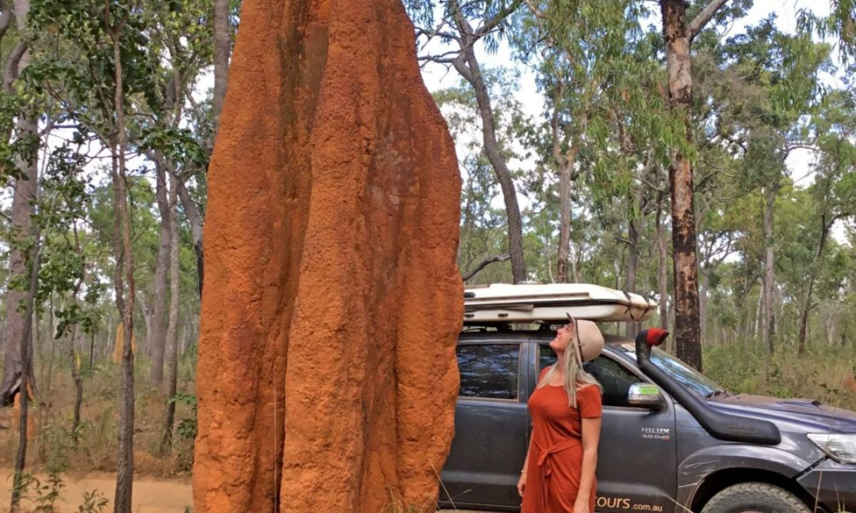 Stephanie Moon sizing up a termite mound